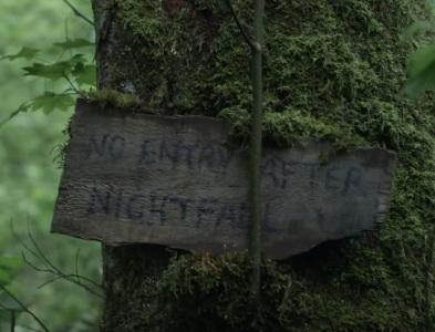 the-woods-adam-wingard.jpg