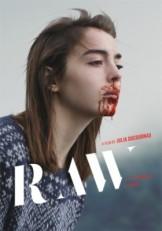 grave-poster-teaser-e1463325356722