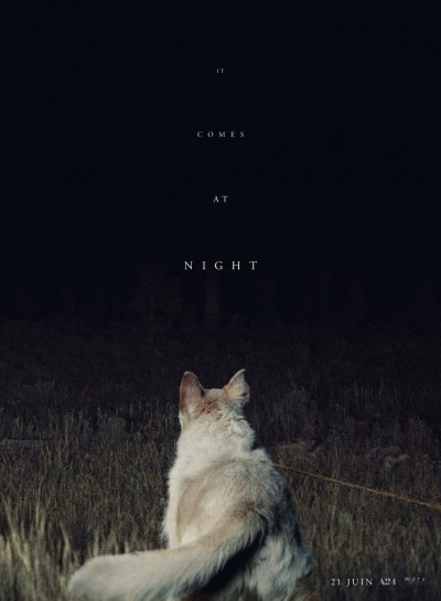 it comes at night poster.jpg
